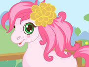 Click to Play Cutie Pony Care