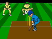 Click to Play Virtual Cricket 2